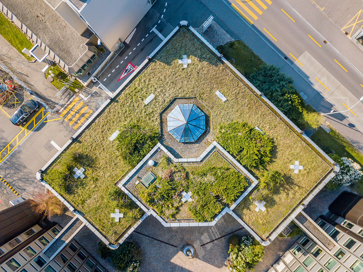 Overhead view of green roof building