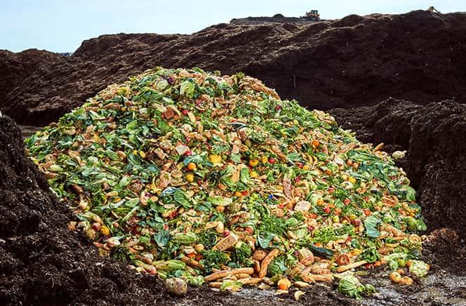 Long Island Compost