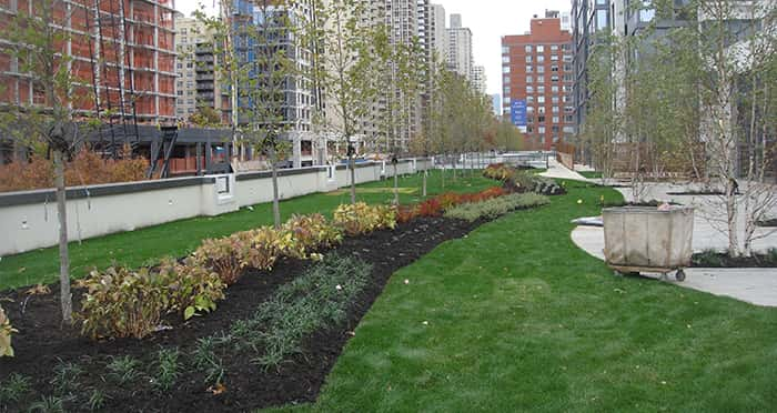 Long Island Compost Green Roof Portfolio