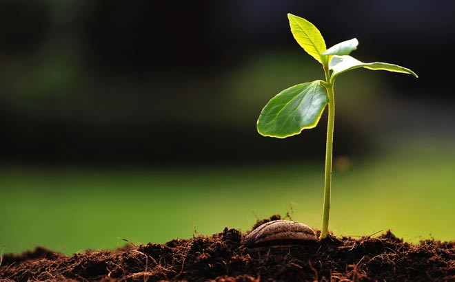 American Organic Energy: Our Philosophy