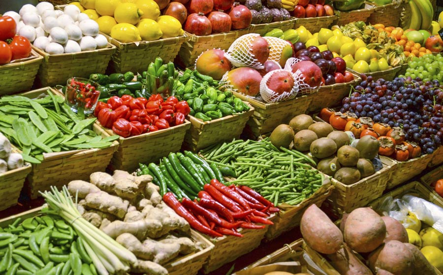 American Organic Energy: Organic Disposal
