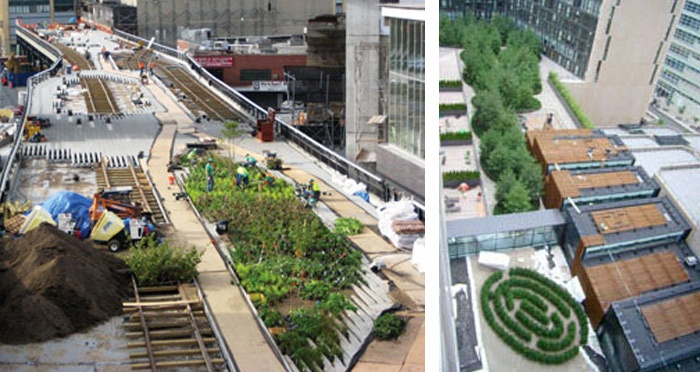 Our Green Roof Portfolio
