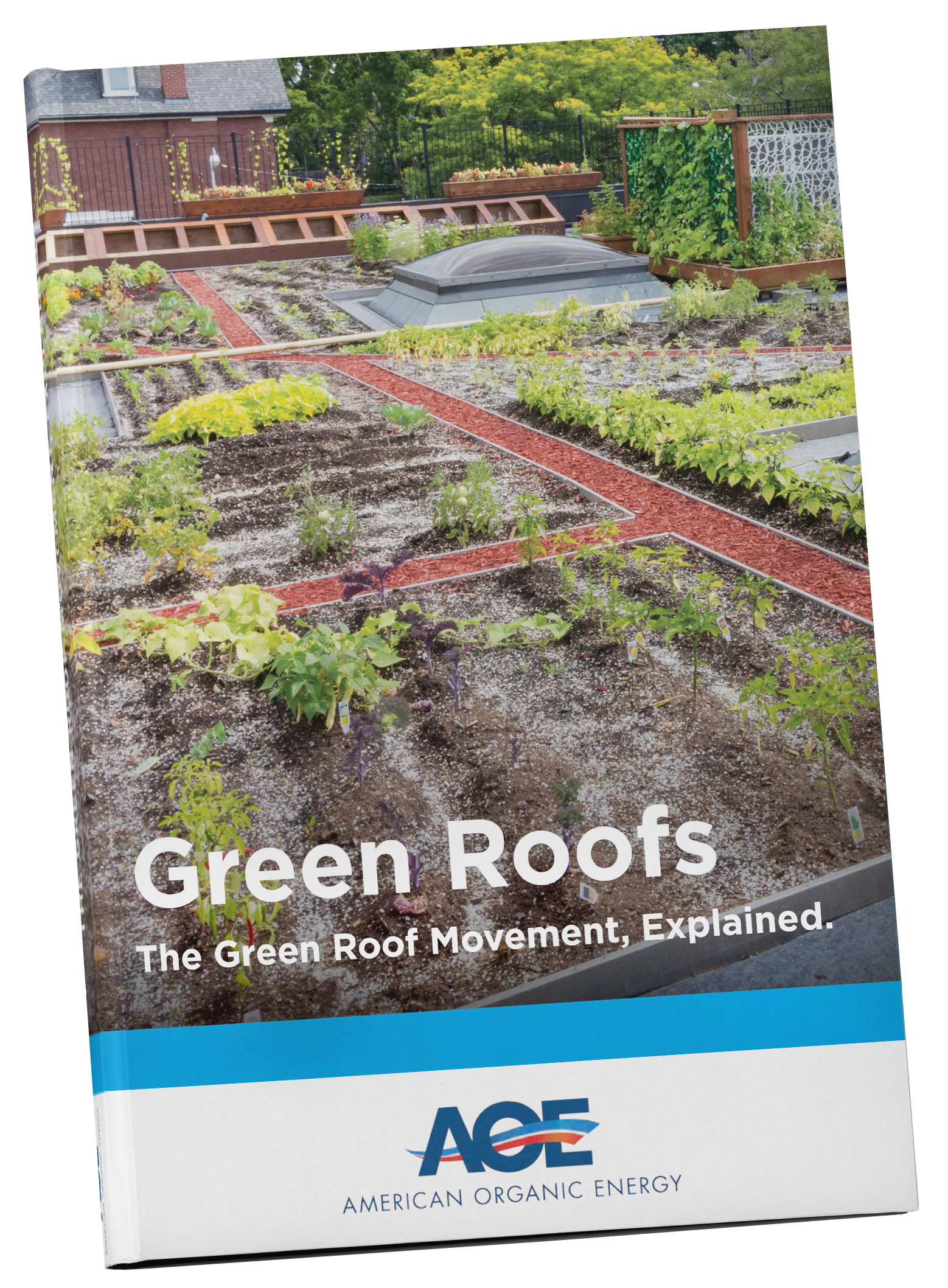 Green Roof PDF Download