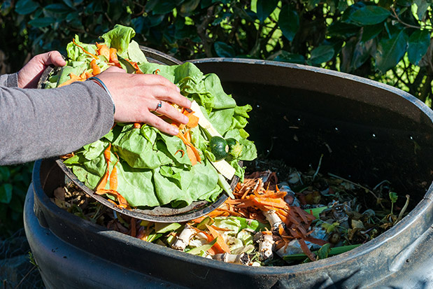 NYLCV Puts Food Recycling and Recovery Act at Top of 2018 Agenda