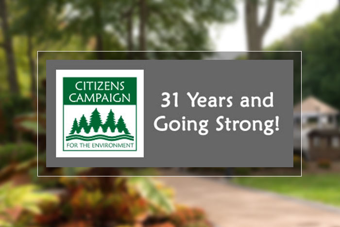 Citizens campaign logo with text - 31 years and going strong - over blurred garden background