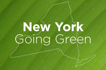New York: Making Strides in Converting Organic Waste to Renewable Natural Gas