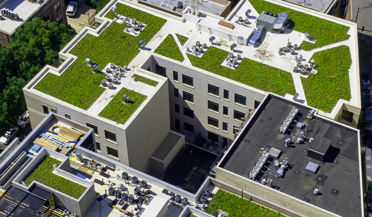 aerial view of green rooftops in city setting