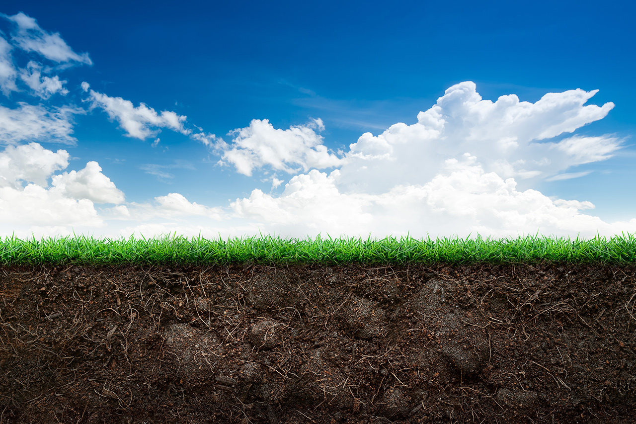 Landscape of sky, grass and soil under earth