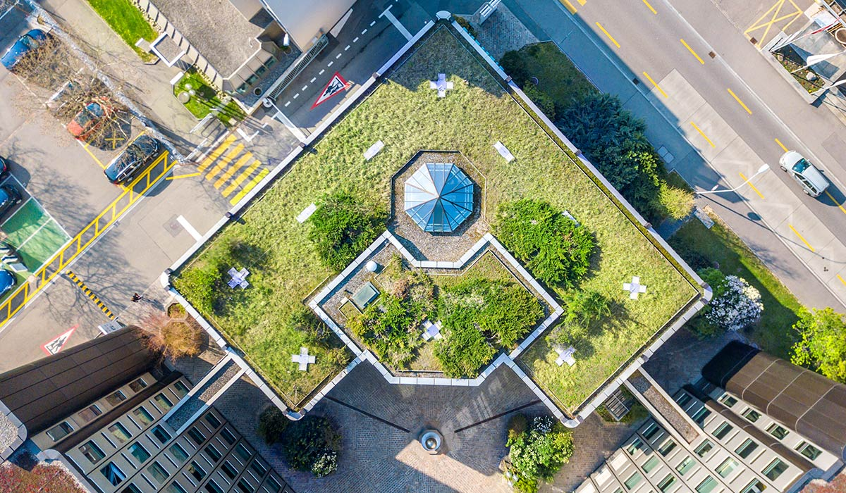 birds eye view of top of apartment complex roof covered with green plants
