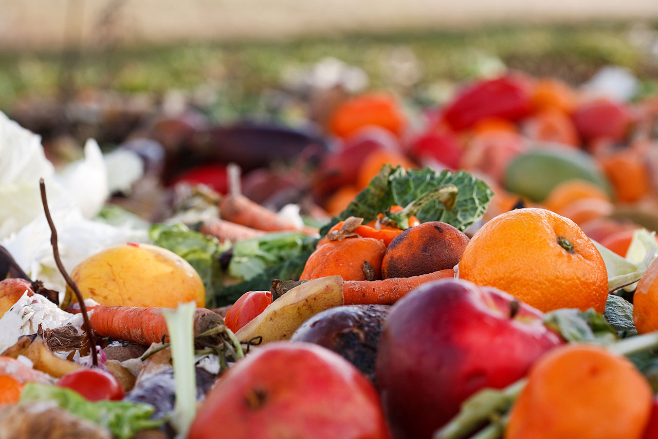 food waste on land