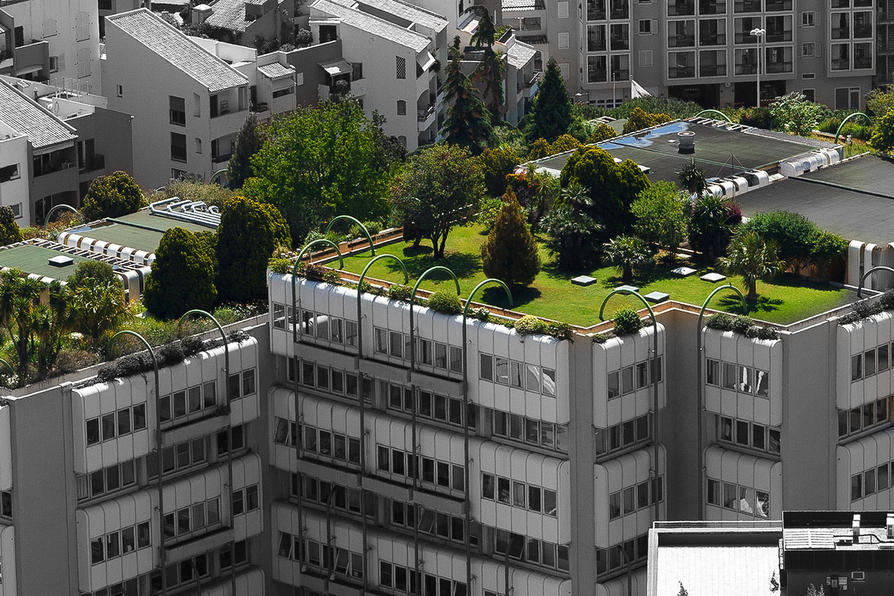 trees, grass, and bushes on top of a roof building