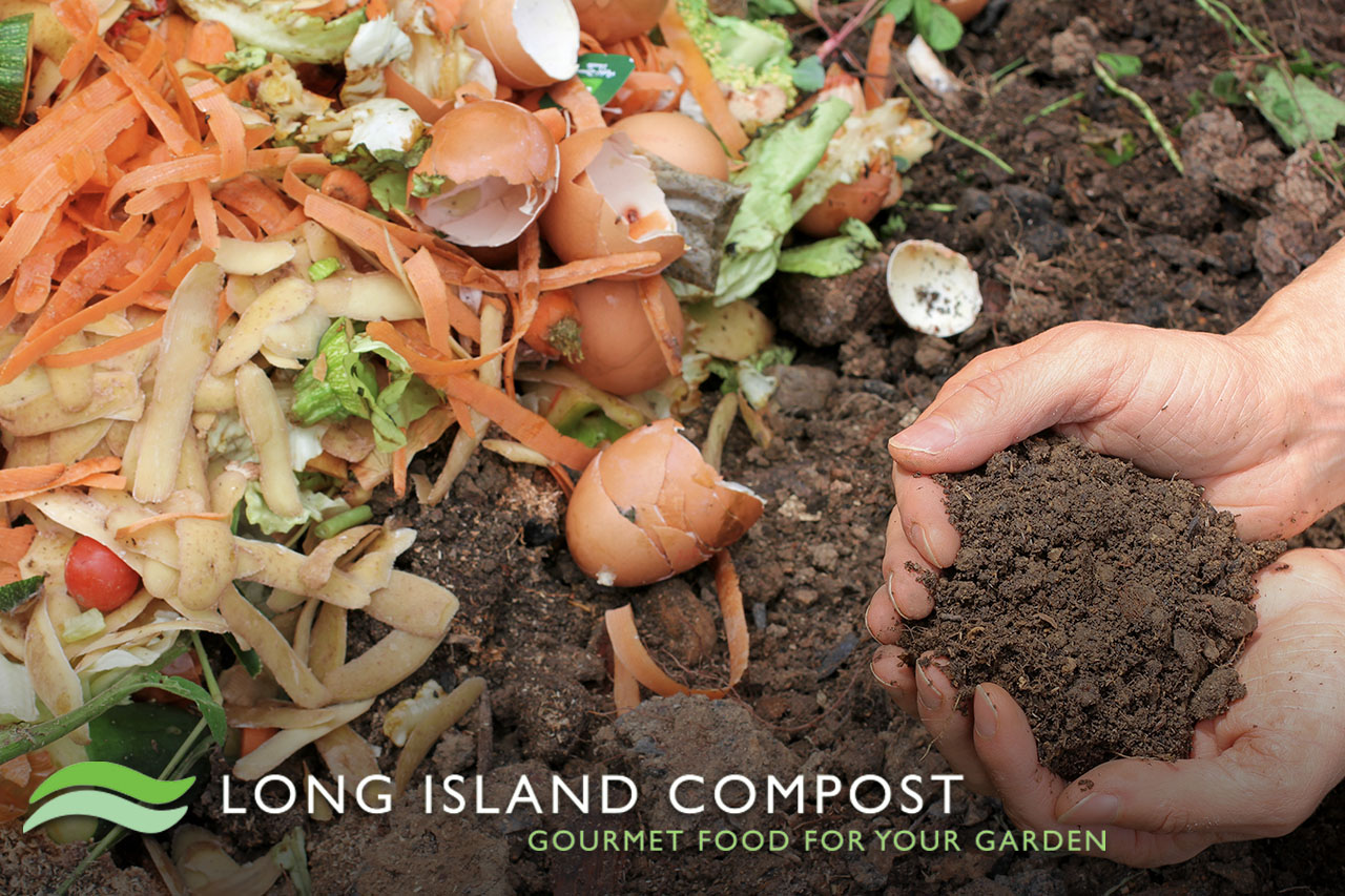 LI Compost - Gourmet Food for your Garden - Hands holding soil next to pile of compost